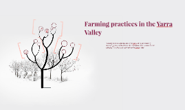 Farming Practices in the Yarra Valley