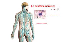 Le système nerveux
