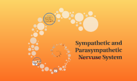 Sympathetic and Parasympathetic Nervouse System