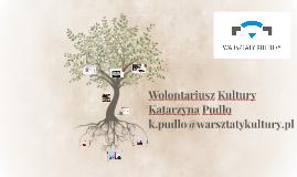 Wolontariusz Kultury