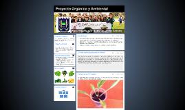 Proyecto orgánico y ambiental