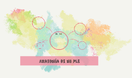 Anatomía de mi PLE