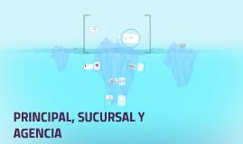 PRINCIPAL, SUCURSAL Y AGENCIA