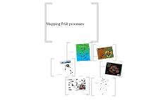 Mapping PAR processes