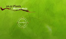 06.05 Plants