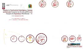 Estudo do patrimônio pedológico e fatores impactantes ambientais de uso público em Parques do Espinhaço Meridional