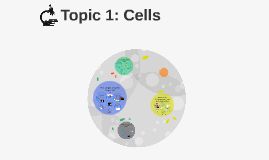 Topic 1: Cells