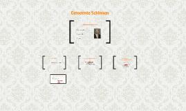 Copy of Copy of Gemeente Schinnen