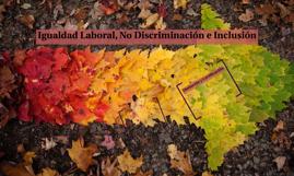 Igualdad Laboral, No Discriminación e Inclusión