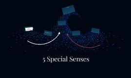 5 Special Senses