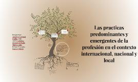 Las practicas predominantes y emergentes de la profesión en