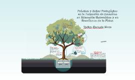 Práctica y Saber Pedagógico en la formación de maestros en E