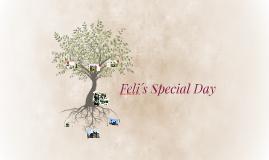 Feli´s Special Day