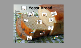 Yeast By rana