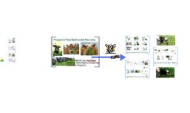 Manejo y Fertilización De Pasturas