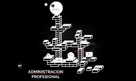 ADMINISTRACION PROFESIONAL
