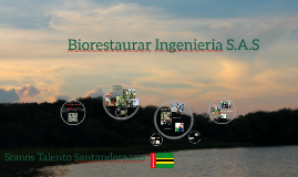 Biorestaurar ingenieria S.A.S