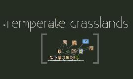 Copy of Copy of Temperate Grasslands
