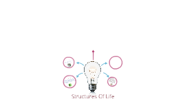Structures Of Life  By Nicolas