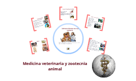 Introduccion a veterinaria