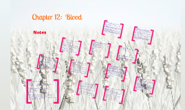 Ch 12 Blood Notes