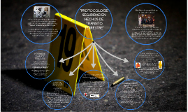 """Copy of """"Protocolo de seguridad en hechos de transito terrestre"""""""