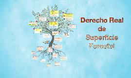 DERECHO REAL