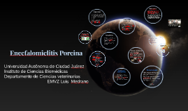 Copy of Encefalomielitis Porcina