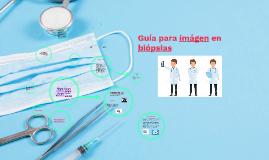 Guía para imágen en biópsias