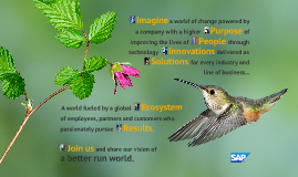 SAP Better Run World - Lemmens