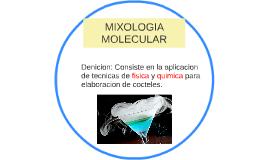Mixologia molecular by leonel de jes s saavedra on prezi for Cocina molecular definicion