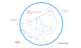 KOOFA Organization Process Model 조직과정 모델