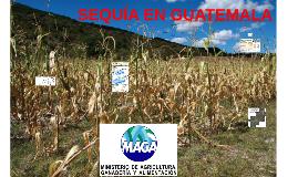 Plan de Atención Por la Sequía MAGA Esquipulas
