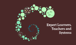 Expert Learners, Teachers and Systems