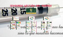 SEMINARIO GESTIÓN DEL CUIDADO
