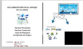 Copy of Documentos