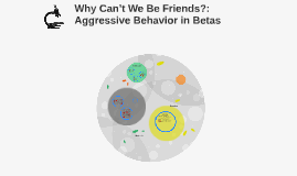 Why Can't We Be Friends?: Aggressive Behavior in Betas