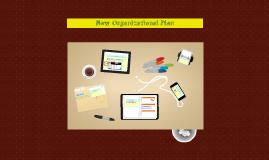 Organizational Proposal MRDS