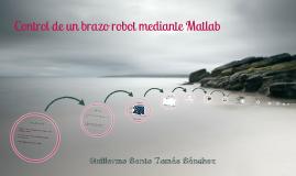 Control de un brazo robot mediante Matlab