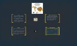 Copy of Sistema de Alimentación por Carburador