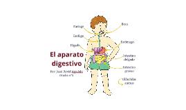 Copy of El aparato digestivo