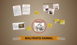 Copy of MALTRATO ANIMAL