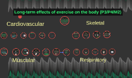 Long-term effects of exercise on the body