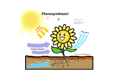 Photosynthesis 3/27