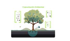 Capacitación Ambiental - Comercializadora de Metales 2014