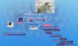 Tundra under threat