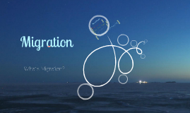 Copy of Types of Migration