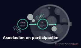Asociación por Participación