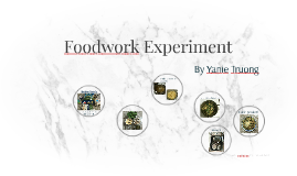Foodwork Experiment