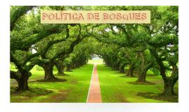 POLÍTICA DE BOSQUES